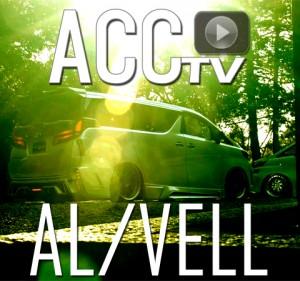 ACCtvAL+VELLblackpearl00cx480-450px
