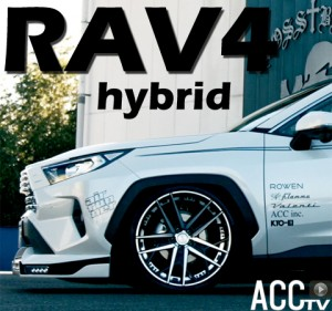 ACCtvRAV4hybrid-ROWENairsusComplete00480-450px